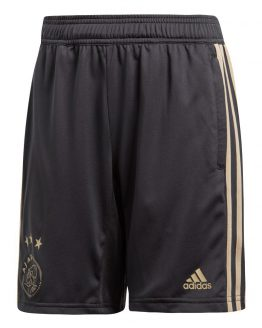 adidas Ajax Trainingsbroekje 2018-2019 Kids Carbon Raw Gold